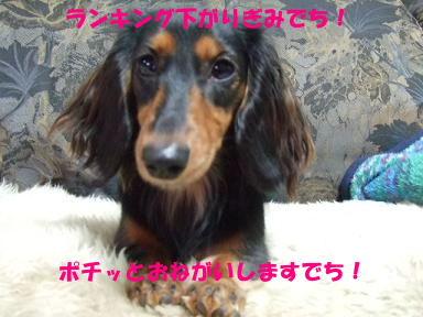 blog315mone13.jpg