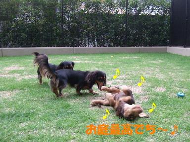 blog3wan01.jpg