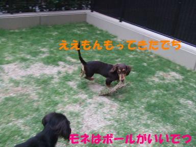 blog3wan02.jpg