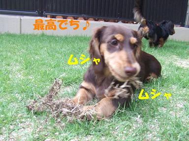 blog3wan04.jpg