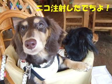 blog5kagetu04.jpg