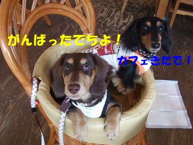 blog5kagetu05.jpg