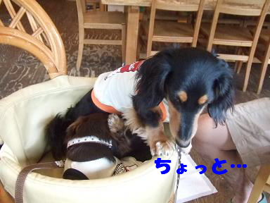 blog5kagetu06.jpg