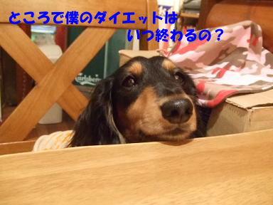 blog6kagetu01.jpg