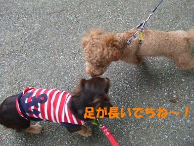 blog715nagai02.jpg