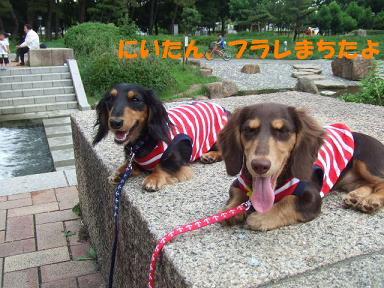 blog715nagai05.jpg