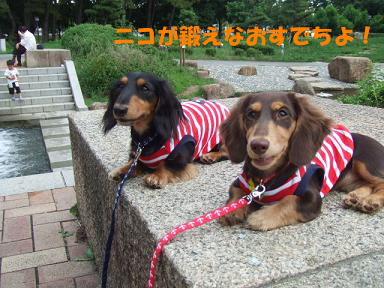 blog715nagai07.jpg