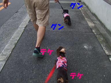 blog715nagai10.jpg