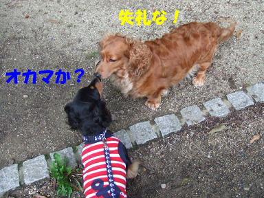 blog715nagai11.jpg