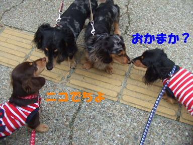blog715nagai12.jpg