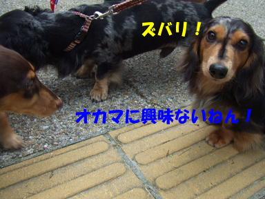 blog715nagai14.jpg