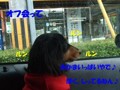 blogLWC32.jpg