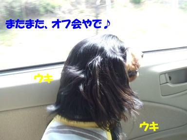 bloga-s02.jpg