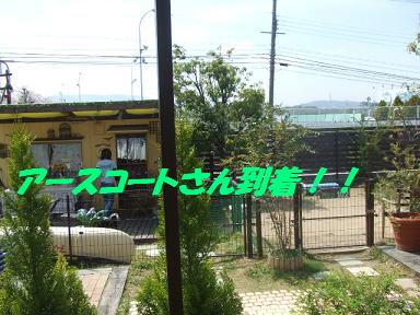 bloga-s04.jpg