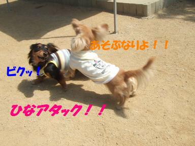 bloga-s07.jpg