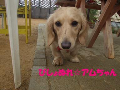 blogacoff08.jpg