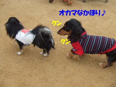 blogacoff09.jpg