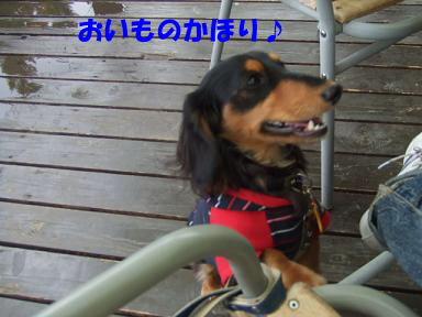 blogacoff12.jpg