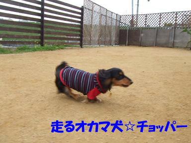 blogacoff17.jpg