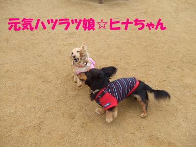 blogacoff19.jpg