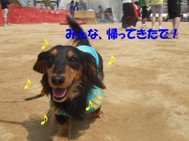 blogasiya15.jpg