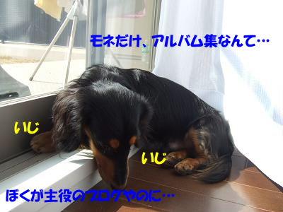 blogcho02.jpg