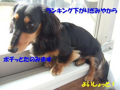 blogcho06.jpg