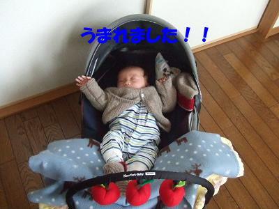 blogcorin01.jpg