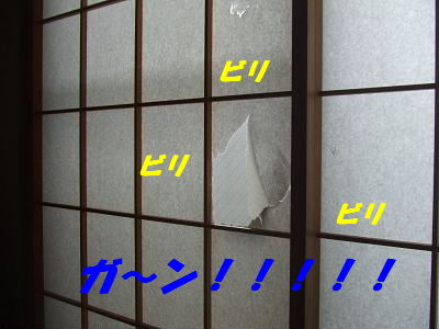 blogcorin11.jpg