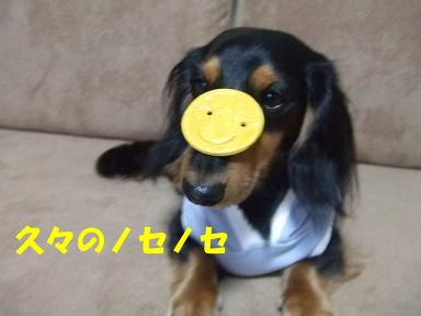 blogfuku09.jpg