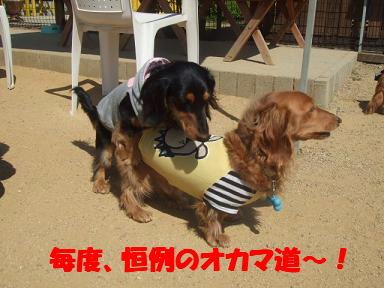 bloggwa-c05.jpg