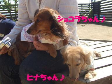bloggwa-c10.jpg