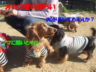 bloggwa-c14.jpg
