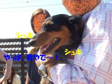 bloggwa-c16.jpg