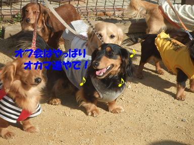 bloggwa-c19.jpg