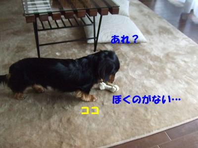 bloghako05.jpg