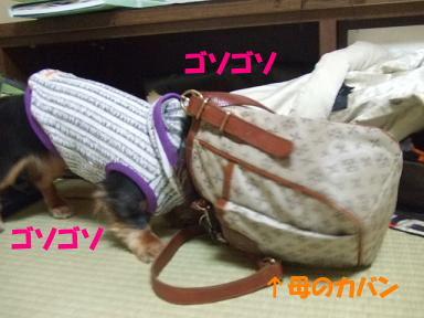 bloghana40.jpg