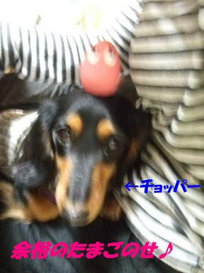 bloghana46.jpg