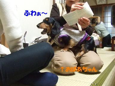 bloghana48.jpg