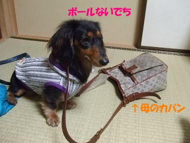 bloghana52.jpg