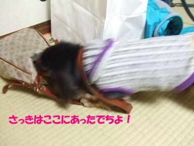bloghana59.jpg