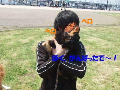 bloghikou06.jpg