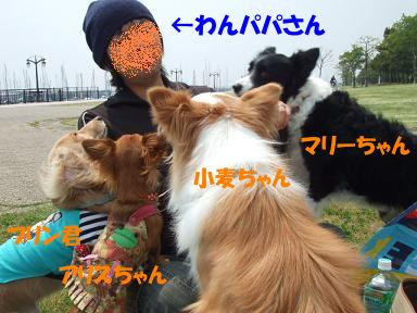 bloghikou09.jpg