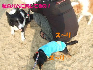 bloghikou32.jpg