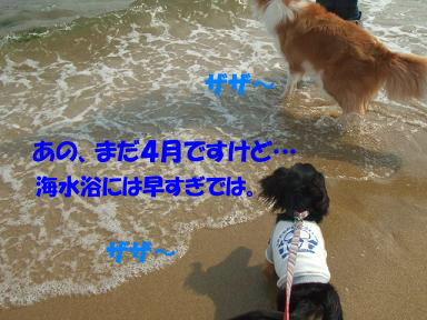 bloghikou35.jpg