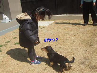 bloghime04.jpg