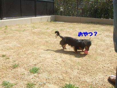 bloghime10.jpg