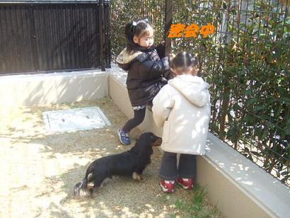 bloghime18.jpg