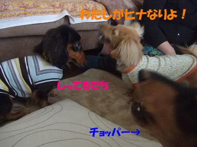bloghinamone02.jpg