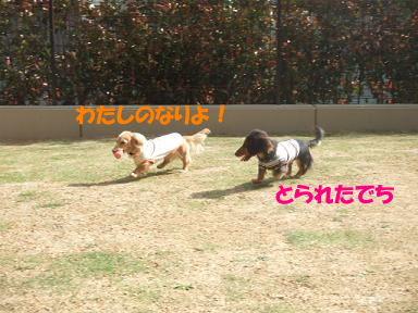 bloghinamone07.jpg